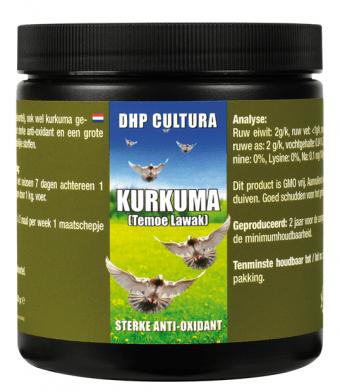 Kurkuma (Temoe Lawak)